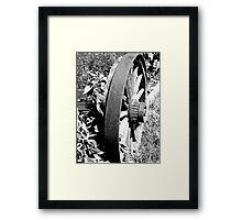 Off The Rim II Framed Print