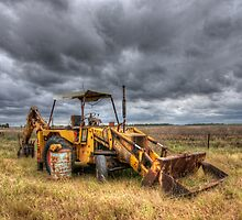 Out To Pasture in colour by Leanne Robson
