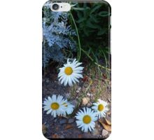 Winchester Daisies iPhone Case/Skin