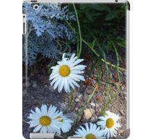 Winchester Daisies iPad Case/Skin