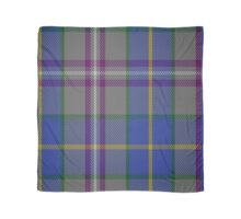 00199 Taobh Dhi Deeside Plaid District Tartan  Scarf