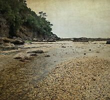 Stony Creek by garts