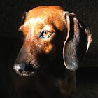 """""""Libby in the Limelight"""" by waddleudo"""