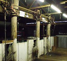 Wheels of Shearing by Judy Woodman