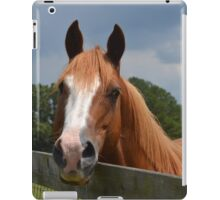 Holly Springs iPad Case/Skin