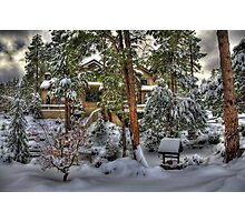 Chalet Of The Pines Photographic Print