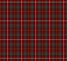 00204 East Kilbride #2 District Tartan  by Detnecs2013