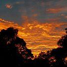 Sunrise over Riverton - series #1 by Wilhelmina