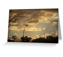Front Yard Sunset  Greeting Card