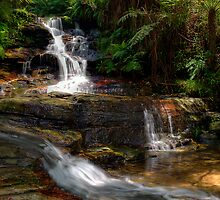 The Cascade Leura by Terry Everson