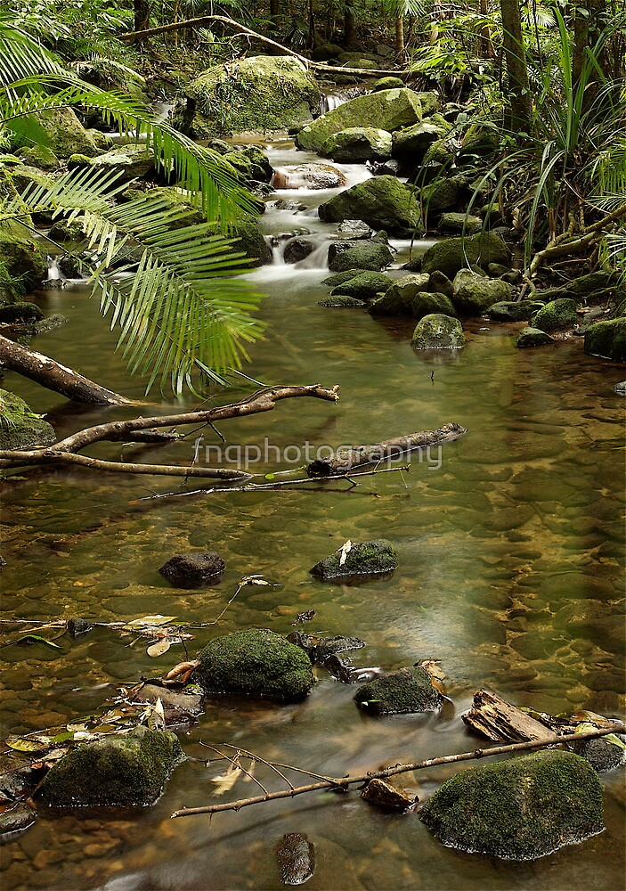 Mossman Gorge by fnqphotography