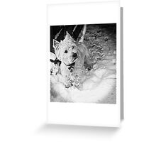 This is Snow More Fun Greeting Card