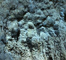Carlsbad Caverns Detail by Stephen Vecchiotti
