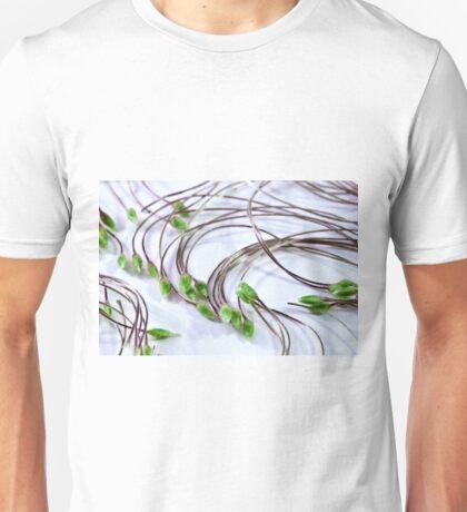 Clematis Seeds Macro  Unisex T-Shirt