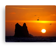 sunset activity at 'the notch', la push, washington, usa Canvas Print