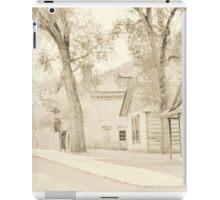 Bannack Historic District iPad Case/Skin
