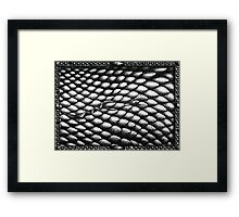 Repeating Forms - Scales #1 Framed Print