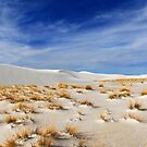 White Sands and Grass by Aaron Bottjen