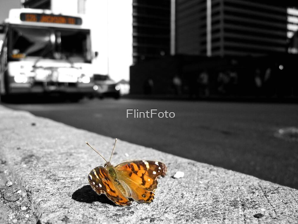 Bravery by FlintFoto