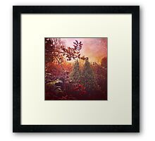 Autumn colours in the nature Framed Print