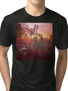 Autumn colours in the nature Tri-blend T-Shirt