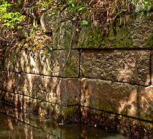 Goat Hill Lock - Detail by Stephen Cross Photography