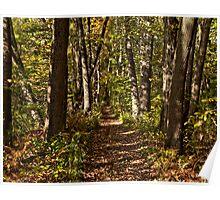 Plummer's Trail Poster