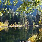Yosemite Reflections, California by Alex Cassels