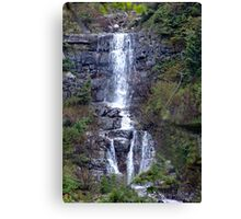 Delicate Waterfall Canvas Print