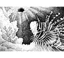Pen & Ink Fish Photographic Print