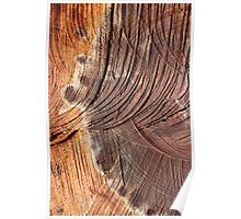 Wood in Abstract Poster