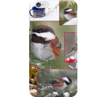 Chickadees in Winter Collage iPhone Case/Skin