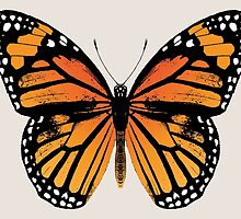 Monarch Butterfly by EclecticAtHeART