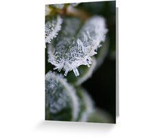 Cold Snap Greeting Card