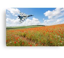 Avro Vulcan B2 bomber over a field of red poppies Canvas Print