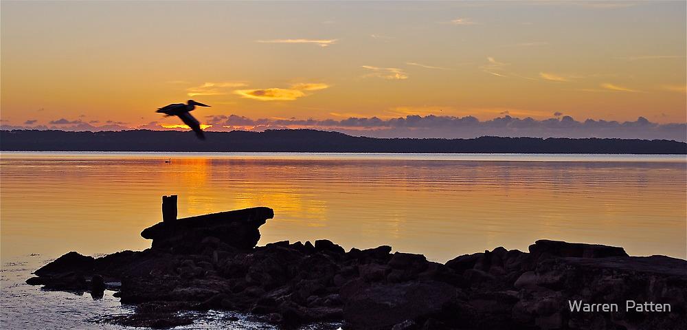 Morning Glide.....22-1-11......no2 by Warren  Patten