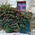 A back alley in Gozo by DeborahDinah