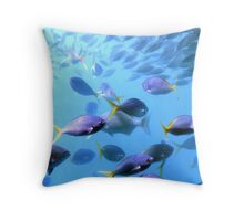 Fish of the Great Barrier Reef Throw Pillow