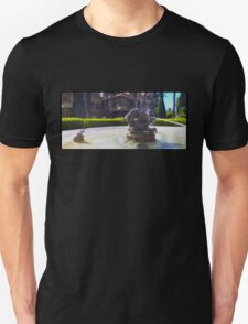 Mysterious Del Ray T-Shirt