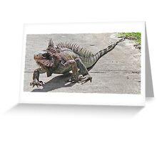 Iguana on patrol Greeting Card
