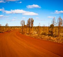 Desert Road - Outback Australia by Rob McDougall