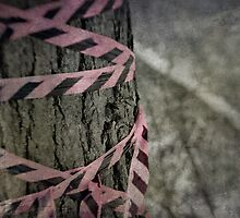 The Pink Tape by Aaron Campbell