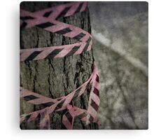 The Pink Tape Canvas Print