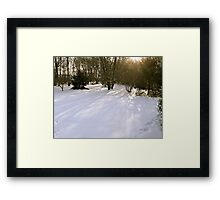 After The Third Snow - 2011 Framed Print
