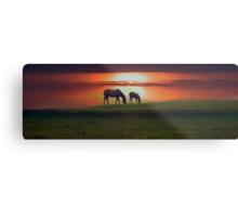 Sunset horses Metal Print