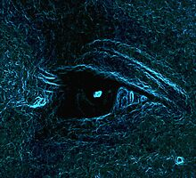 eye see by danimac