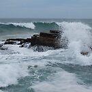 The cruel sea by Juilee  Pryor