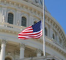Capitol Stars and Stripes by WalnutHill