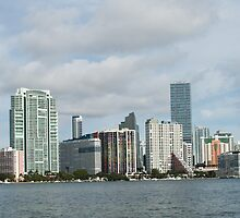 City of Miami by Mayra  Pau