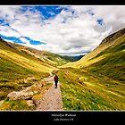 Helvellyn Trail by Richard Lam